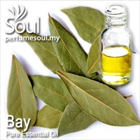 Pure Essential Oil Bay - 10ml