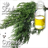 Natural Aroma Oil Cypress - 50ml