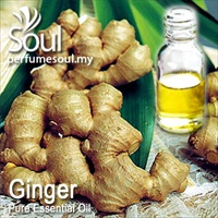 Pure Essential Oil Ginger - 10ml